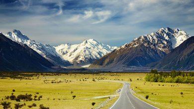 Photo of Vé máy bay đi New Zealand giá rẻ